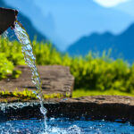 Herlig revitalisert drikkevann fra DBV — Det Beste Vann